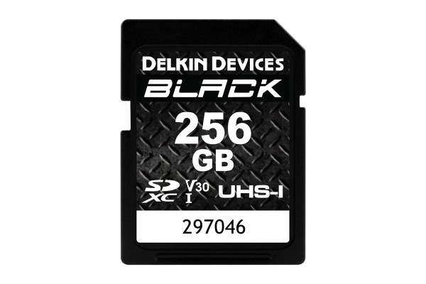Delkin SD Black Rugged UHS-I V30 256gb